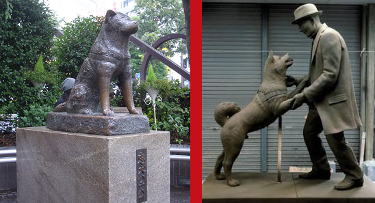 Hachiko Reunites With Owner At Shibuya Station After Nearly a Century Apart –...